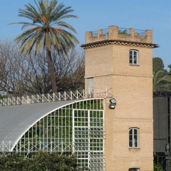 Jardín Botánico de Valencia 3