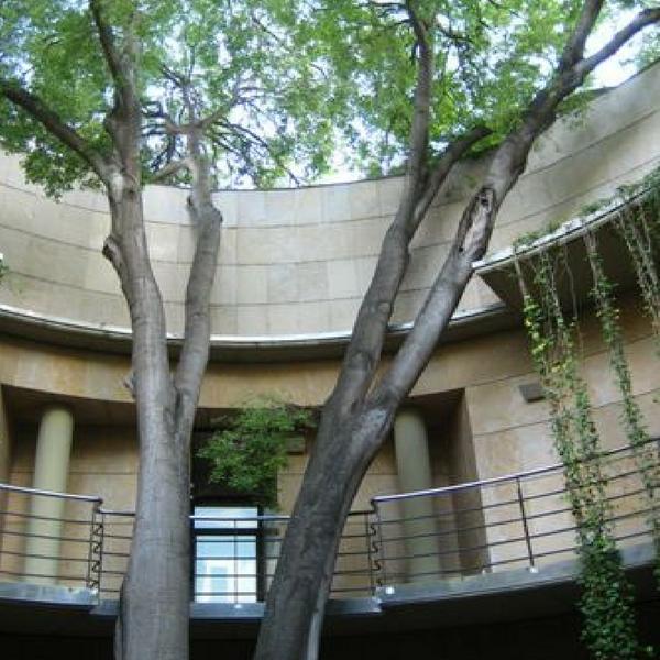 Jardín Botánico de Valencia 9